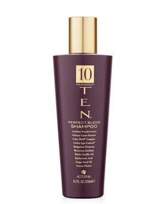 Ten Shampoo
