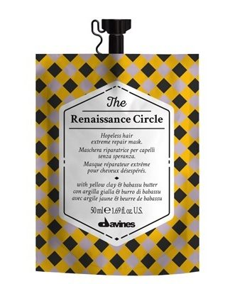 The Circle Chronicles The Renaissance Circle