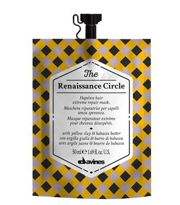The Circle Chronicles The Renaissance Circle