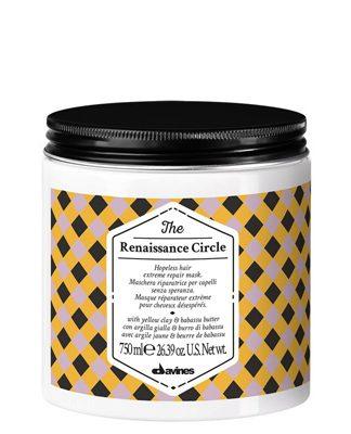 The-Circle-Chronicles-The-Renaissance-Circle